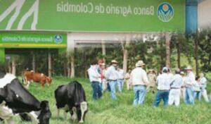consulta de saldo banco agrario cuenta de ahorro en linea telefono oficinas